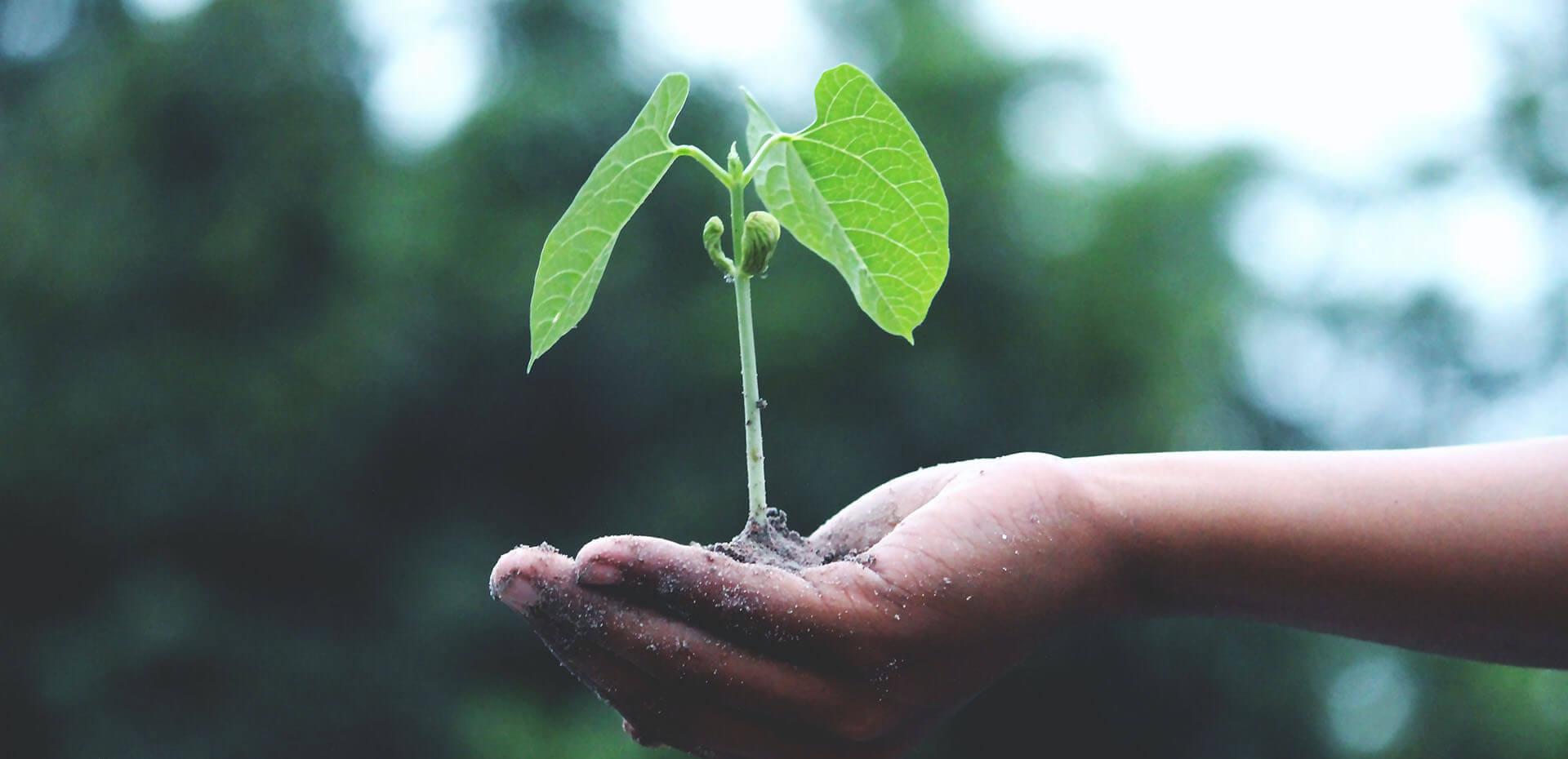 Nachhaltigkeit machen